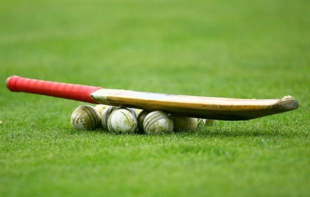 CricketHF29aug2013