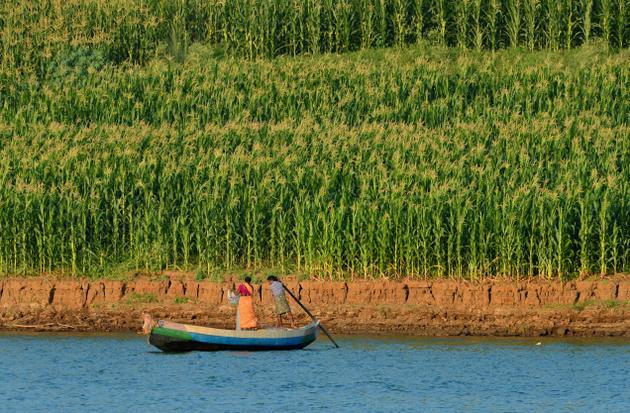 Fisherman fishing on waters. Photo: K.R. Deepak